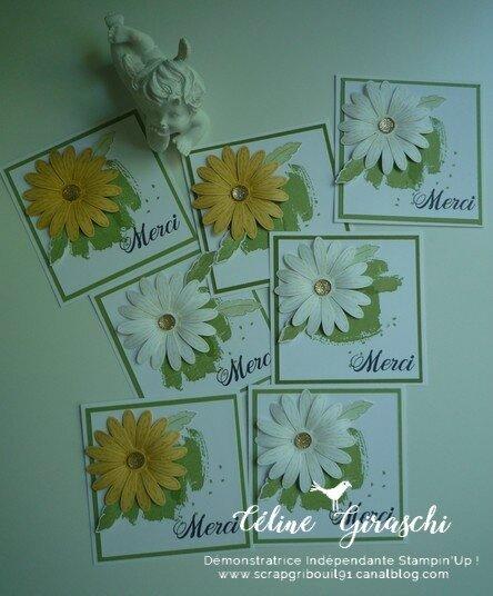 Carte Marguerite -3