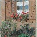 Fenêtre fleurie (pastel) j'aime mes géraniums rouges dont j'admire l'éclatante couleur, symbole du réconfort.
