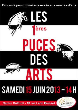 Poster_puces_2013