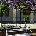 Banc blanc sous la glycine (Espagne)