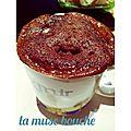 *mug cake chocolat*