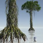 01 Dagobah tree rhyzophora 3D Star Wars C4D max obj 3ds Icon