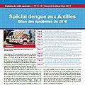 Spécial dengue aux antilles. bilan des épidémies de 2010 in bulletin de veille sanitaire antilles-guyane. n°9-10