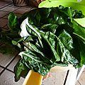 332 - du vert dans l'assiette