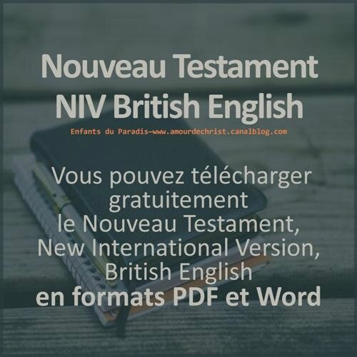 Niv New Testament Pdf