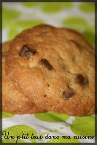 Cookies__rable_p_can_choco_lait1