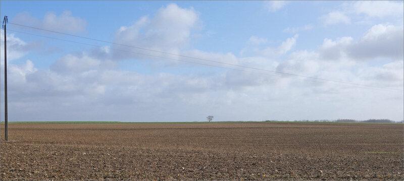 paysage plaine ligne élec 281119