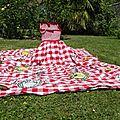 robe pour déjeuner sur l'herbe