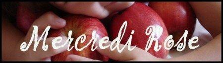 Mercredi_Rose