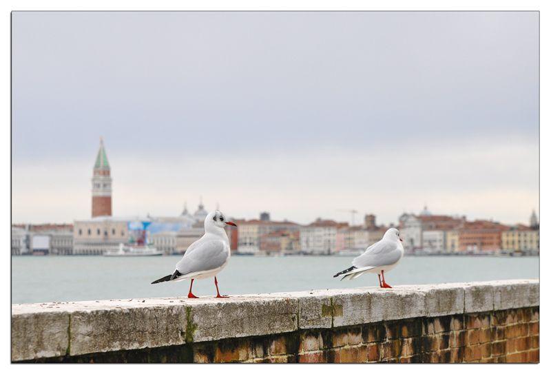 Venise_4038