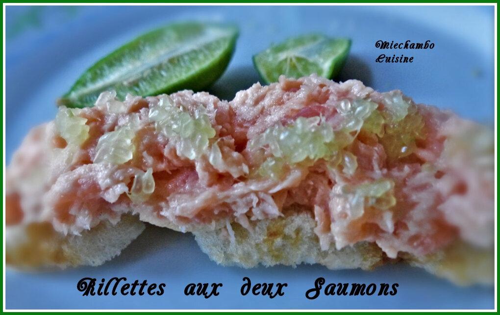 Rillettes aux deux saumons, citron caviar