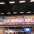 Entrée Kawaii arena