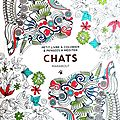 20160123 - Chats MARABOUT