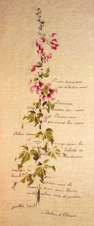 BRODERIE34989