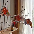 Photos de l'arbre d'hiver et de notre mangeoire maison
