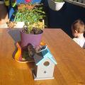 Ma petite maison d'oiseau