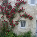 La petite maison voit rouge ...