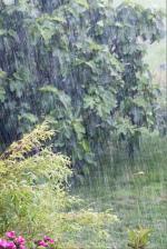 Pluie Lampaul 1b