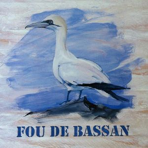 Fou-de-Bassan