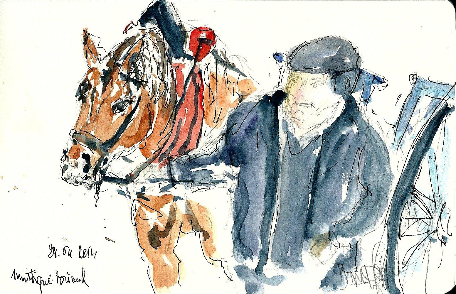 2014 le cheval et son meneur