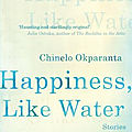 Happiness, like water (chinelo okparanta)