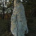 Menhir tayrac 47270