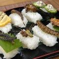insect_sushi_01