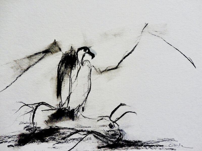 vautour 6