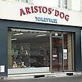 Aristos'dog saint quentin aisne