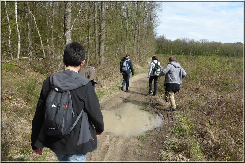 Geocaching foret d'Orleans (15)