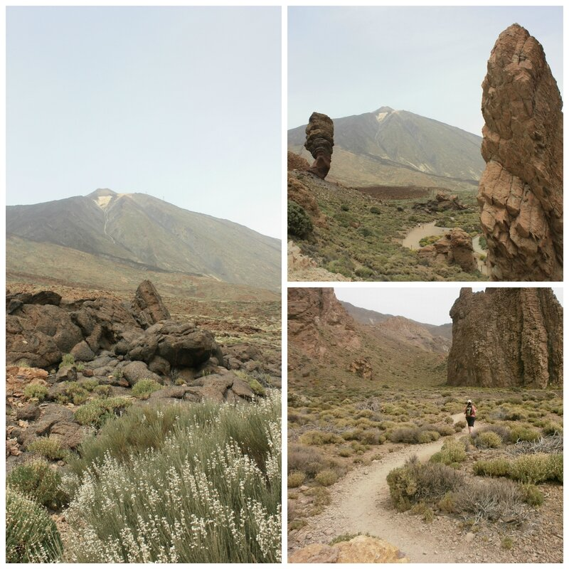 PicMonkey CollageTEIDE