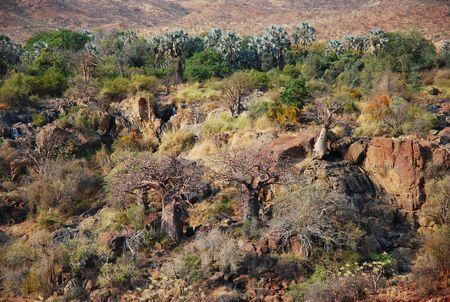 Namibie__47_