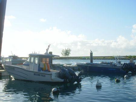 DSCN0515 Guadeloupe J9