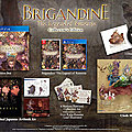 Brigandine collector
