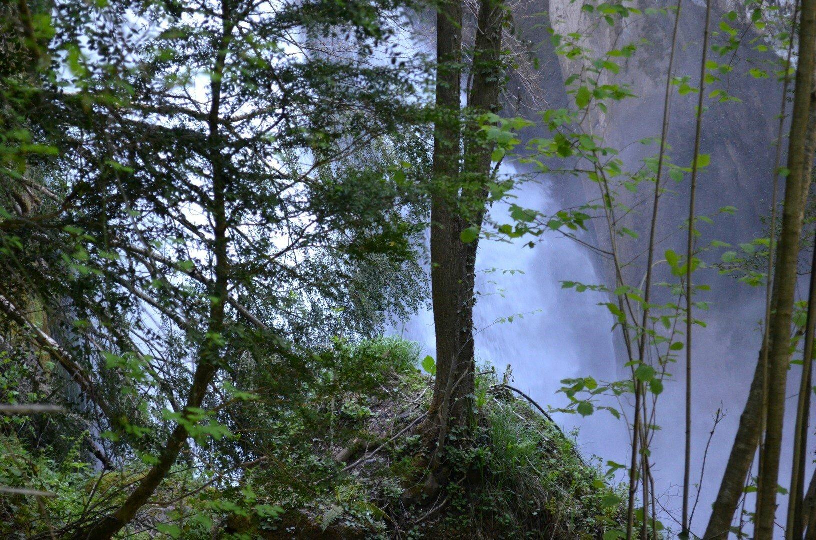 La cascade du gave de Lescun, prise à quelques mètres...
