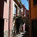 Collioure21