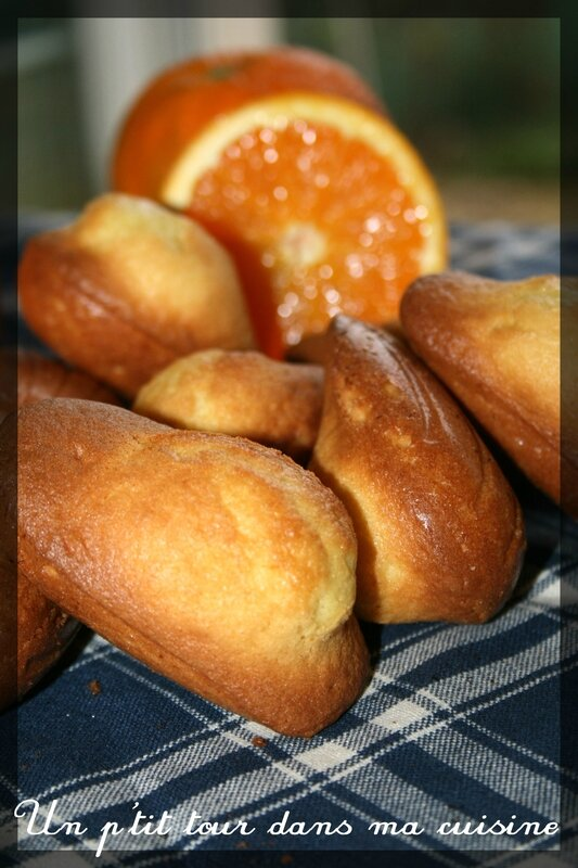 Madeleines orange