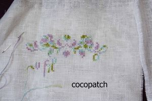 cocopatchsal2