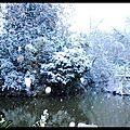 neige Jardin 2011 (4)