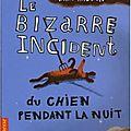Mark haddon, le bizarre incident du chien pendant la nuit, nil, 2004.