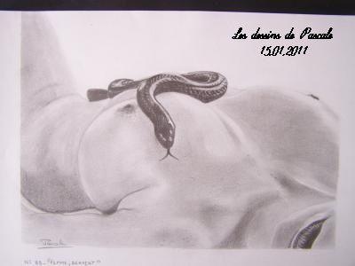 n 83 femme serpent 1 des dessins au gr de mes envies pascale lbv. Black Bedroom Furniture Sets. Home Design Ideas