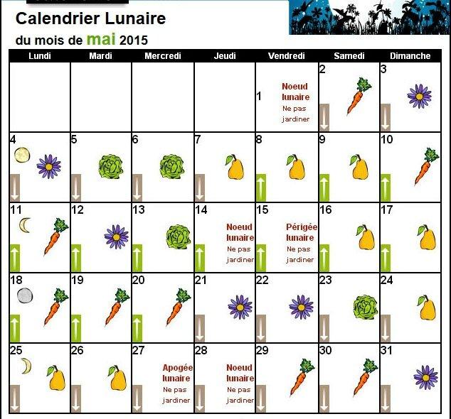 Calendrier Plantations.Calendrier Lunaire Mai 2015 Le Jardin Des Petits Lutins