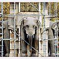 Les eléphants de chambéry...
