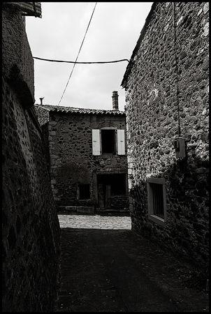 39_Alba_Graphik