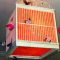 Cage aux papillons