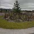 Rond-point à cambridge (nouvelle-zélande)