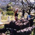 Atoana tombe de Gauguin_05