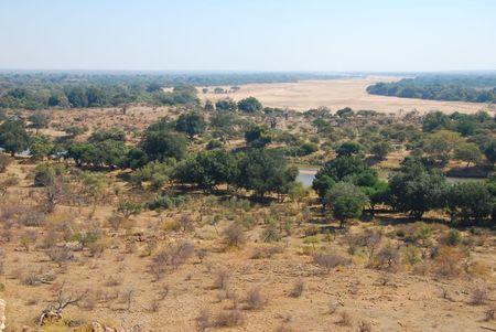 Afrique du Sud (463)