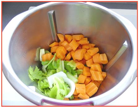 fond de légumes2