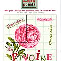sal lili point pivoine étape 3 (3)